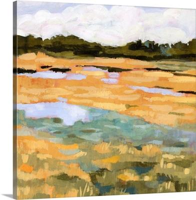 Marsh View II