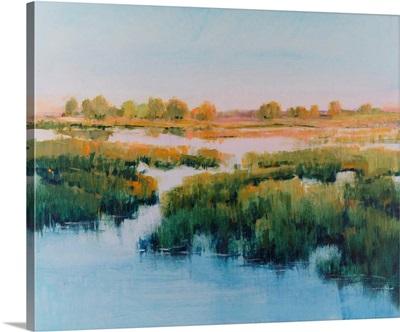 Marshland View II