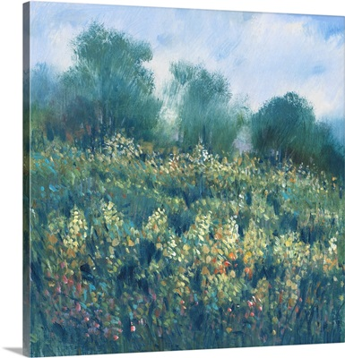 Meadow Wildflowers I