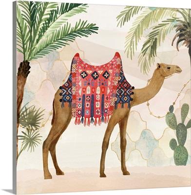 Meet me in Marrakech I