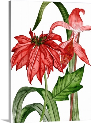 Merry Blossom II