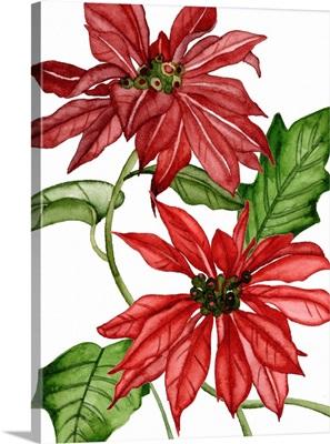 Merry Blossom IV