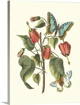 Midsummer Floral I