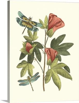 Midsummer Floral III