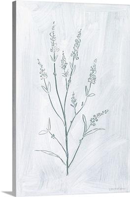 Milkweeds I
