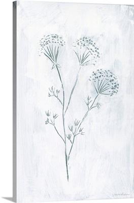 Milkweeds II