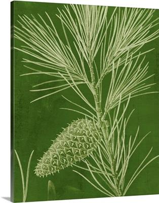 Modern Pine V
