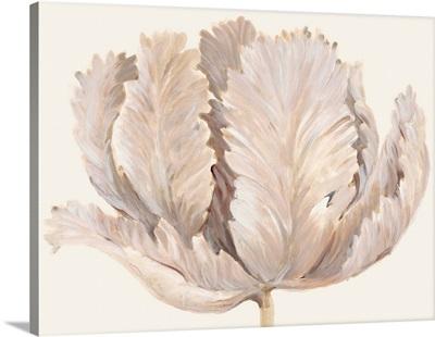Monochromatic Tulip II