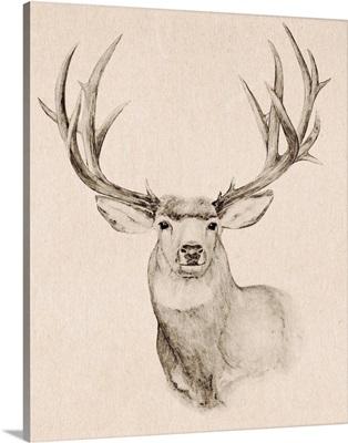 Natural Buck II