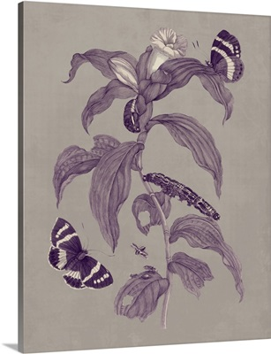 Nature Study in Plum and Taupe I