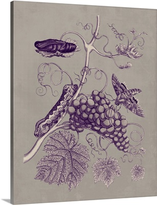 Nature Study in Plum and Taupe III