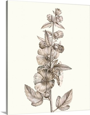 Neutral Botanical Study V