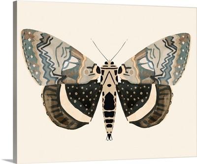 Neutral Moth I