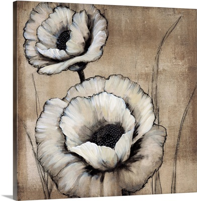 Neutral Poppies II