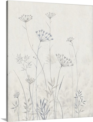 Neutral Queen Anne's Lace I