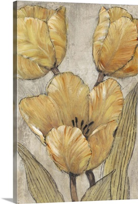 Ochre and Grey Tulips II