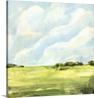 Open Fields I
