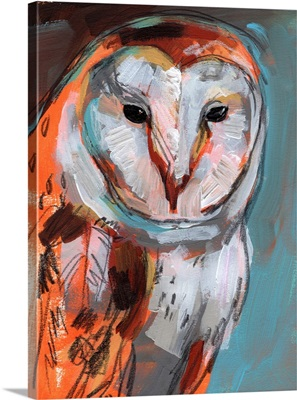 Optic Owl I