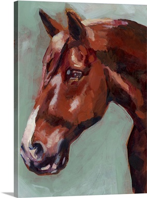 Paint By Number Horse I