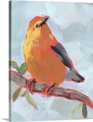 Painted Songbird III