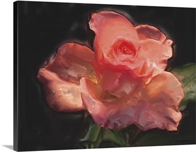 Painterly Flower IV