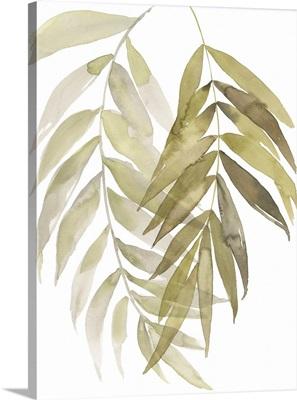 Palm Embrace I