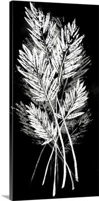 Palm Leaf Fresco II