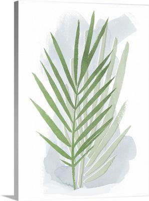Palm Overlay I