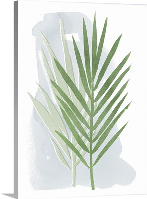 Palm Overlay II