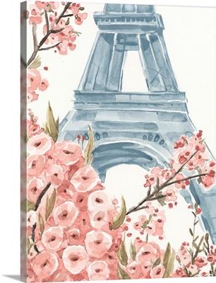 Paris Cherry Blossoms I