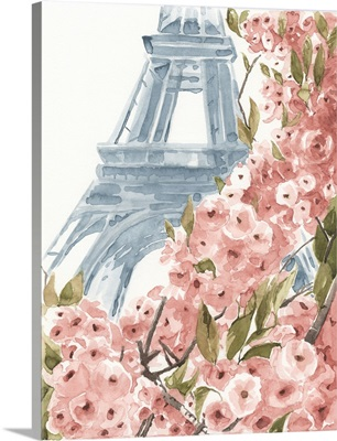 Paris Cherry Blossoms II