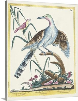 Pastel Birds V