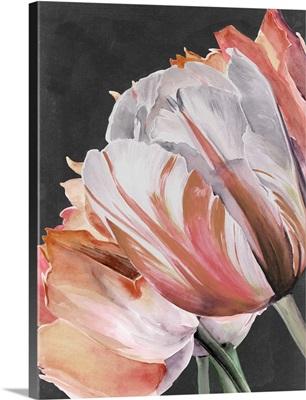 Pastel Parrot Tulips III