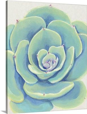Pastel Succulent IV