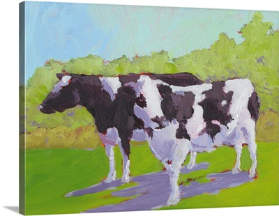 Pasture Cows II
