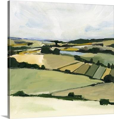 Patchy Landscape II