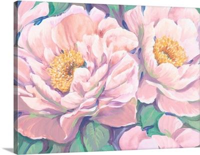 Peonies in Bloom II