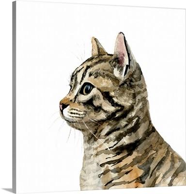 Pet Profile III