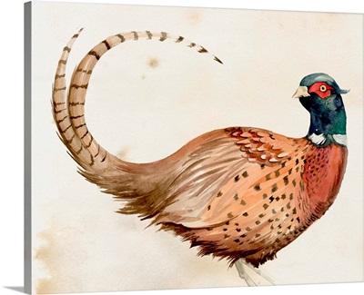 Pheasantry I