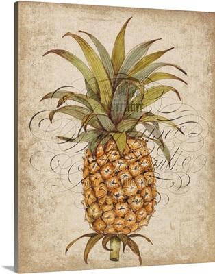 Pineapple Study II