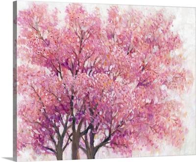 Pink Cherry Blossom Tree I