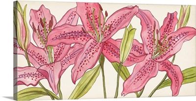 Pink Lilies I