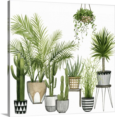 Plant Haven II