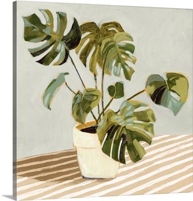 Plant On Stripes II