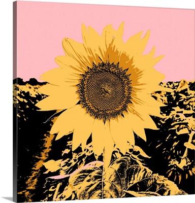 Pop Art Sunflower III