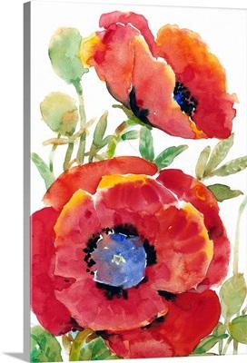 Poppy Floral II