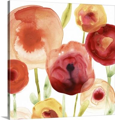 Poppy Patch II