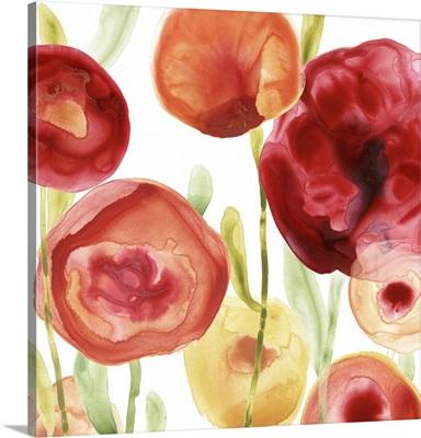 Poppy Patch IV