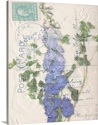 Postcard Wildflowers II