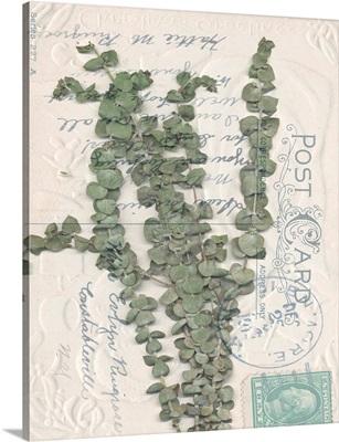 Postcard Wildflowers III